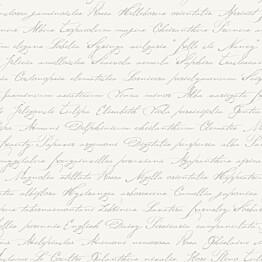 Tapetti Handwriting Latin Flower Names 128031 0,53x10,05 m valkoinen/helmiäishopea non-woven