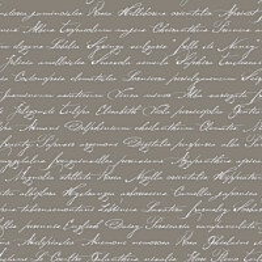 Tapetti Handwriting Latin Flower Names 128035 0,53x10,05 m taupe non-woven