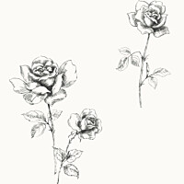 Tapetti Roses 127609 0,53x10,05 m valkoinen/musta non-woven
