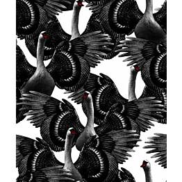Tapetti Studio Lisa Bengtsson Swan lake mustavalkoinen 0,53x10,05 m non-woven