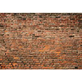 Valokuvatapetti Idealdecor Digital Brick Wall Red 4-osaa 5195-4V-1 254x368 cm