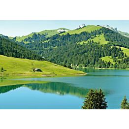Valokuvatapetti Idealdecor Digital Swiss Mountain Lake Launensee Gstaad 4-osaa 5186-4V-1 254x368 cm