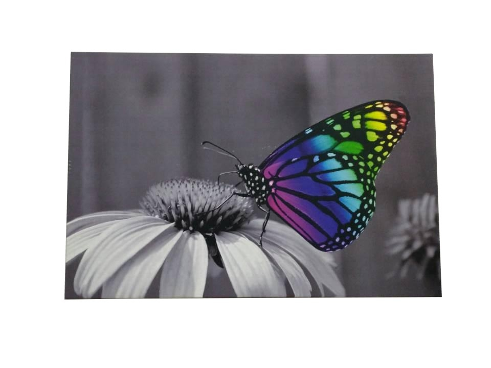 LED Canvas Butterfly 400 x 600 mm