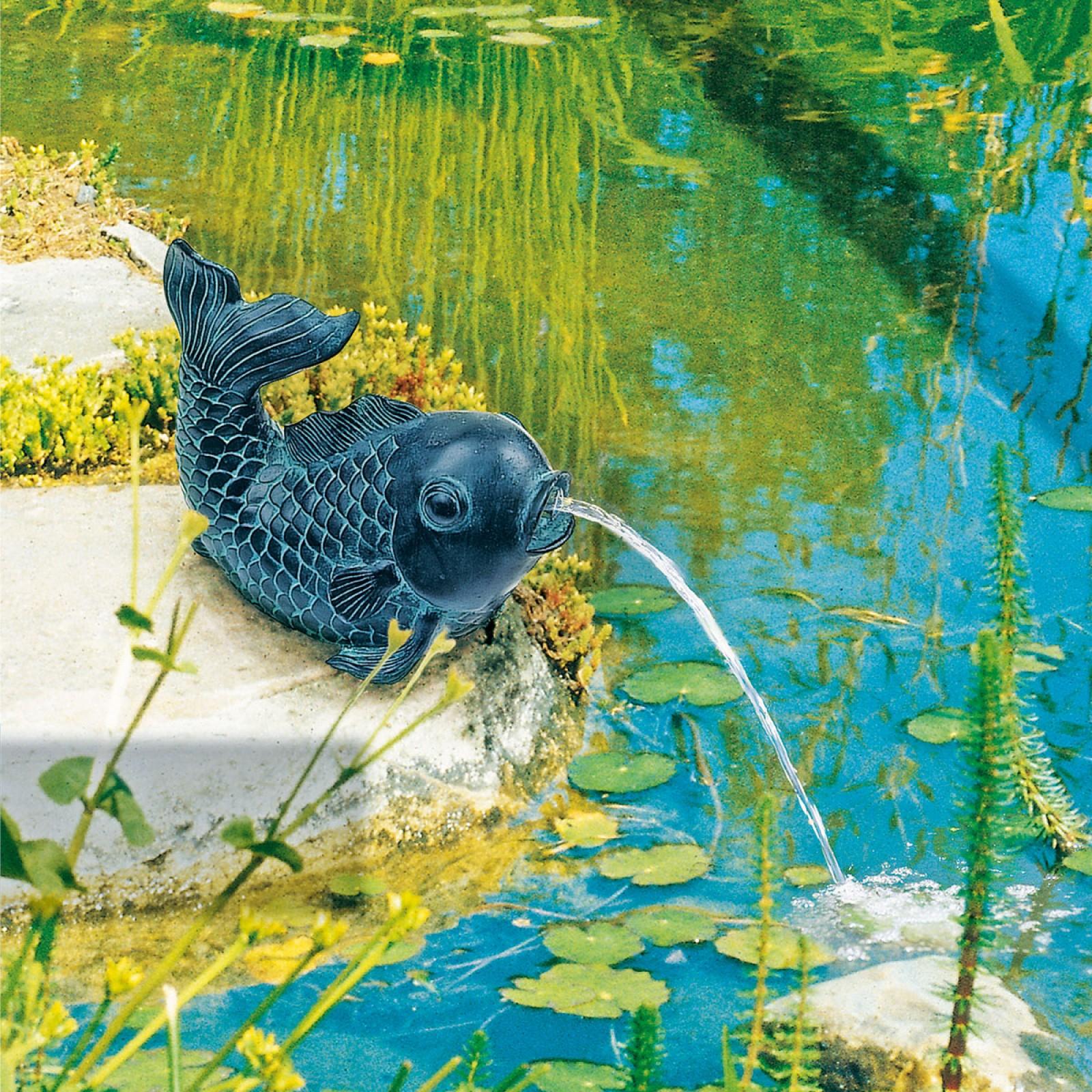 Suihkuta kalaa