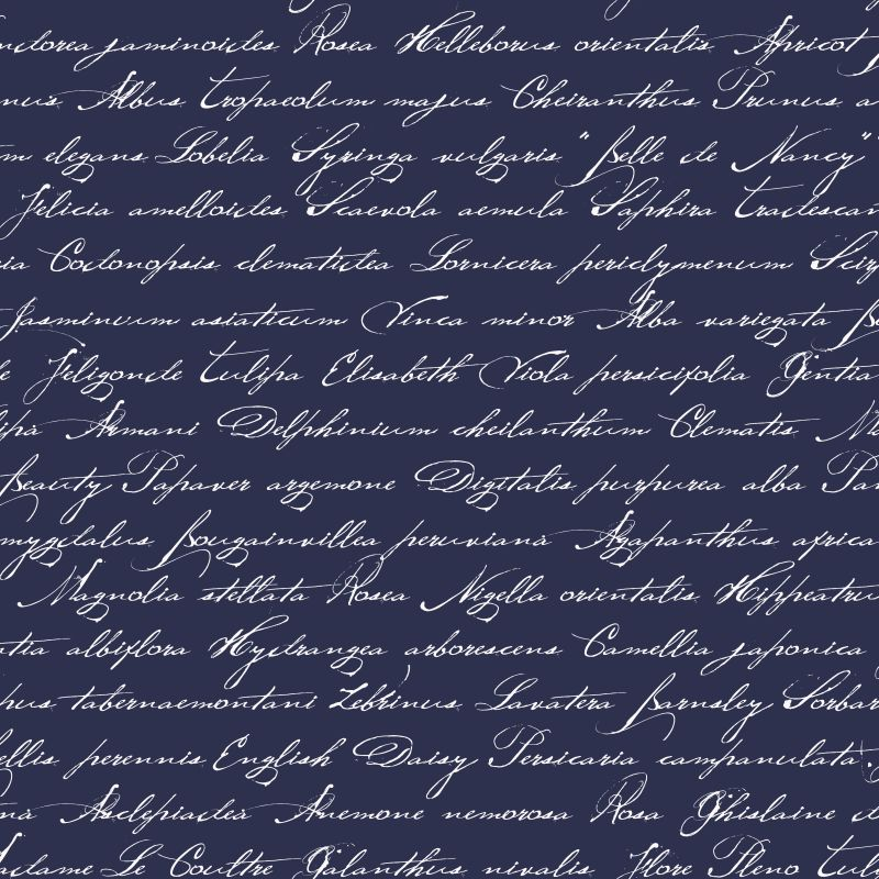 Tapetti Handwriting Latin Flower Names 128040 0,53x10,05 m tummansininen non-woven