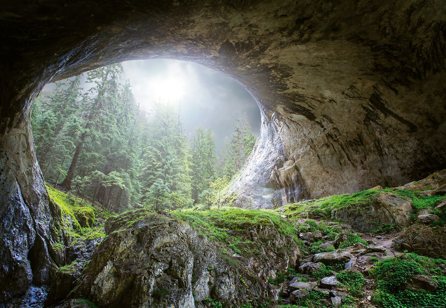 Valokuvatapetti Idealdecor Digital Cave In The Forest 4-osaa 5078-4V-1 254x368 cm
