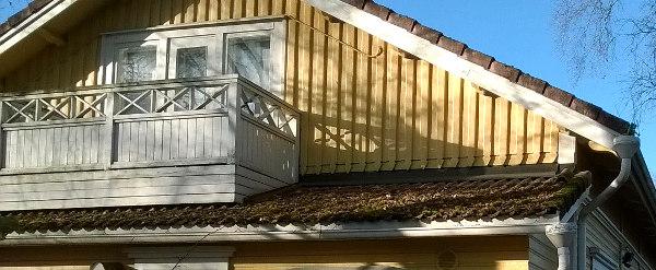 Roskaa katolla