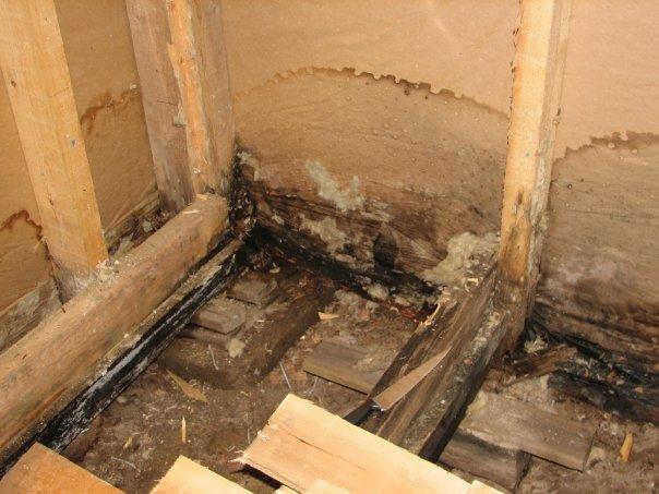 Talon alapohjan kosteusvaurio